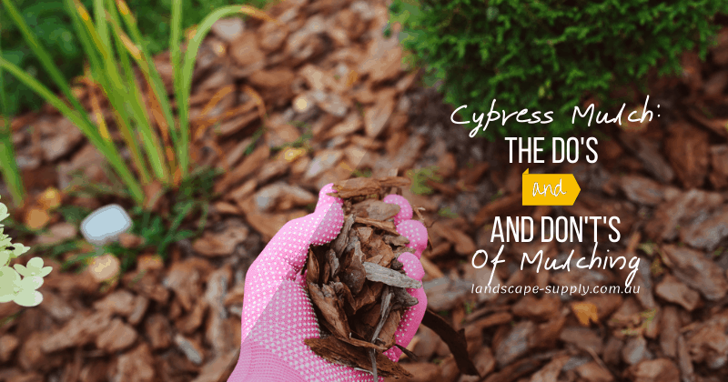 mulching garden beds with pieces of pine bark