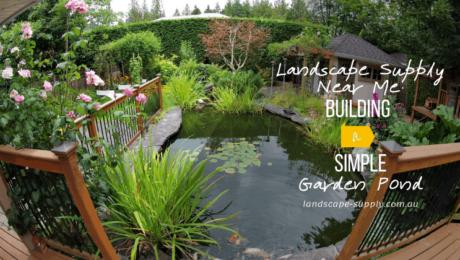 koi pond in the backyard